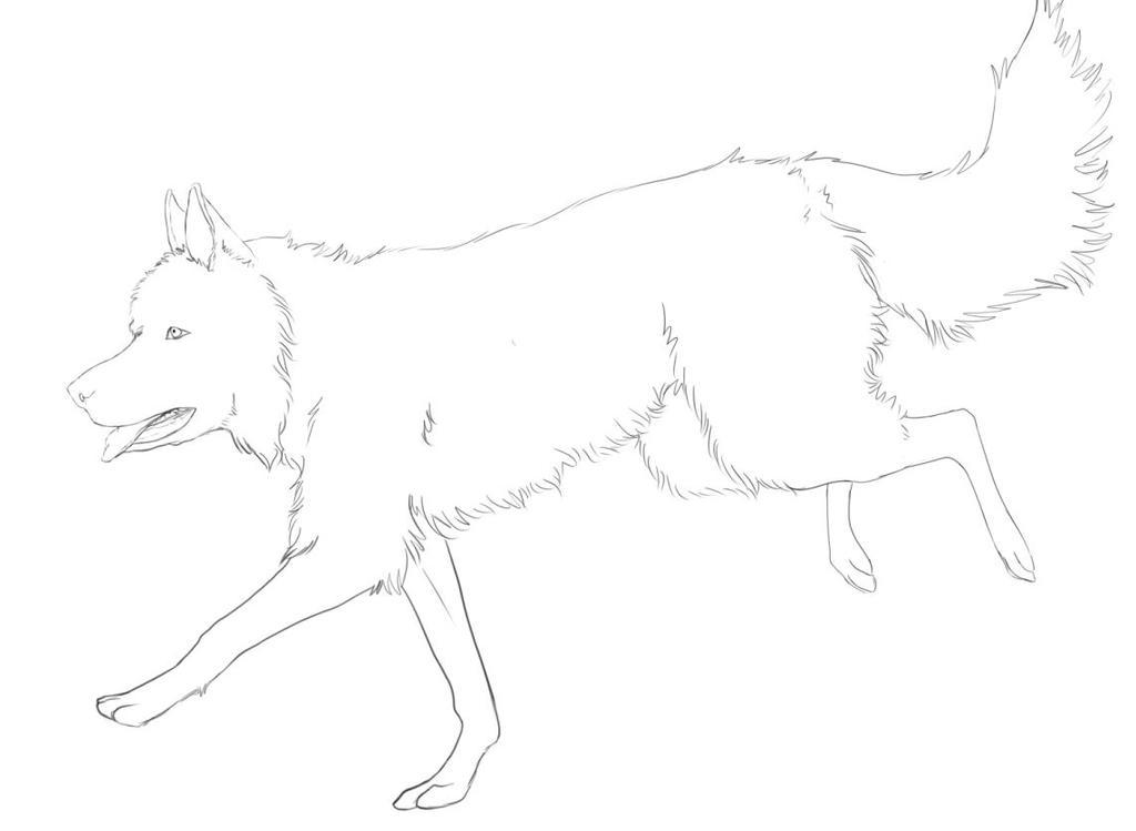 Husky Dog Lineart by MerriTheDoodler