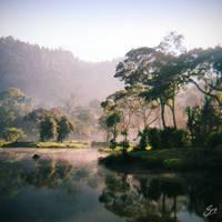 Misty Morning at Situ Gunung by thesaintdevil