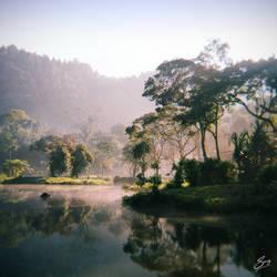 Misty Morning at Situ Gunung