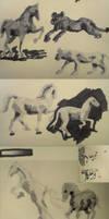Horses marker by Maltakreuz