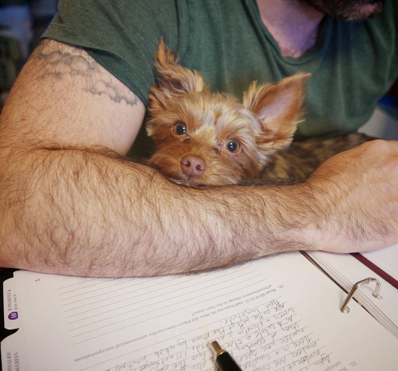 Study Partner by HannahCombs