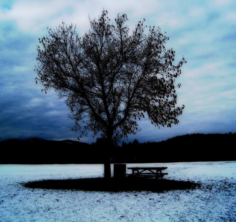 Dream Tree by SilverDragon2050