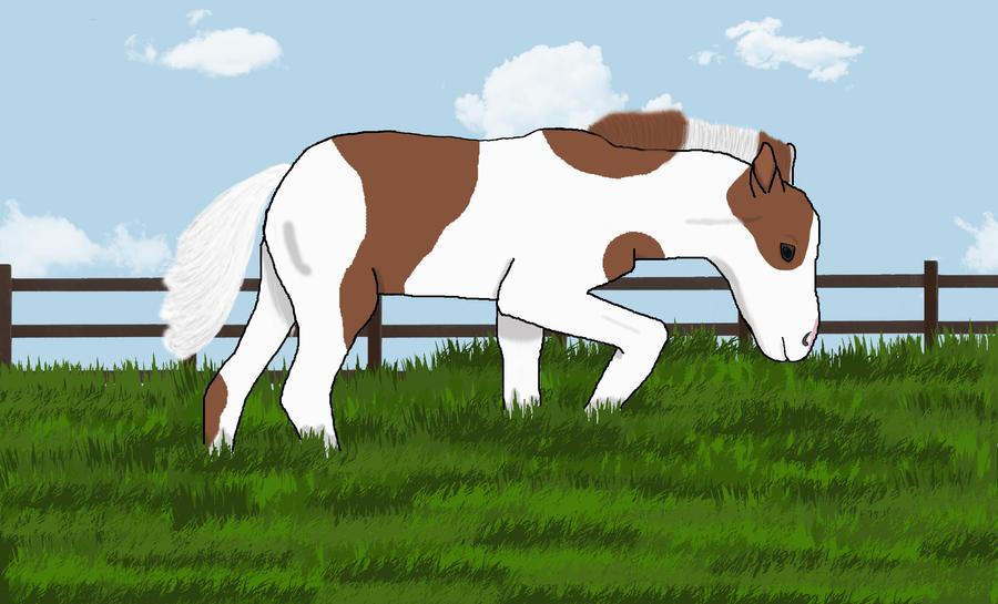 Falabella foal by SilverDragon2050
