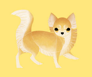 Geometric dogs - Chihuahua Long Haired by Kelgrid