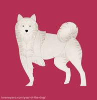 Year of the Dog - Hokkaido by Kelgrid