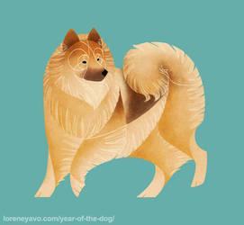 Year of the Dog - Eurasier
