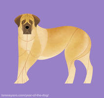 Year of the Dog - English Mastiff by Kelgrid