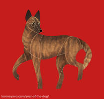 Year of the Dog - Dutch Shepherd by Kelgrid