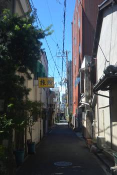 POESIE JAPONAISE | Boketto