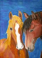 Horses by Prettyinblue