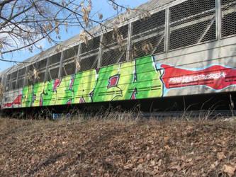 dtscrew freight color