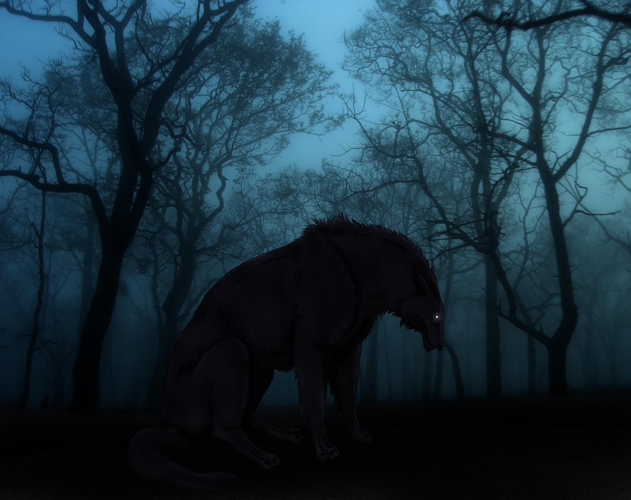 Dark forest by Foelina on DeviantArt