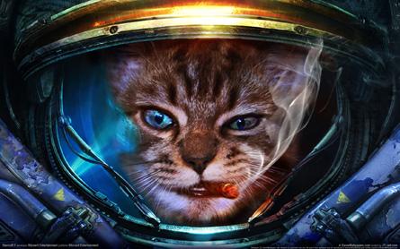 Programa 10x04 (14-10-2016) 'Pre-análisis Mafia III y Wow Legion'  Marine_cat__profile_picture__sc2_by_kusmich-d8miljm