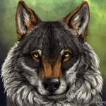Wolf head speedpaint