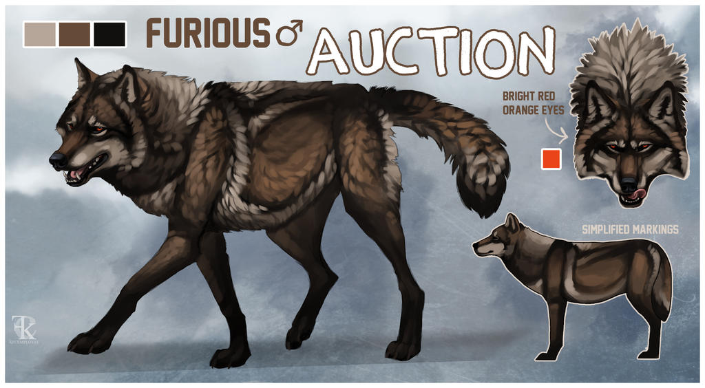 Tall Dark And Handsome Brown Wolf Auction Closed By