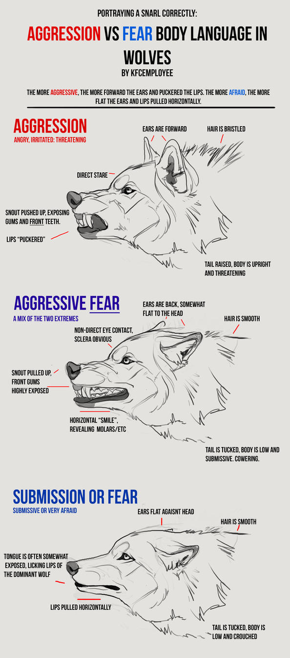 Agression vs Fear in Wolves cheat sheet: Snarls by Chickenbusiness ...