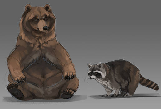 Stupid bear and also raccoon
