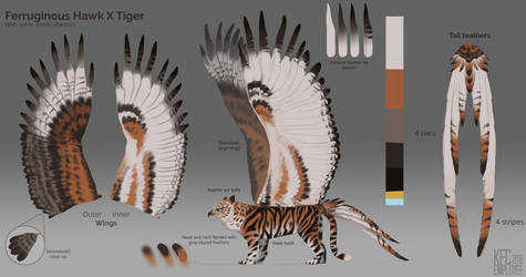 Ferruginous x Tiger gryphon simplified markings by Chickenbusiness
