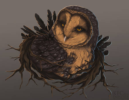 Wise old owl lady