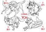 Random canine YCH: CLOSED