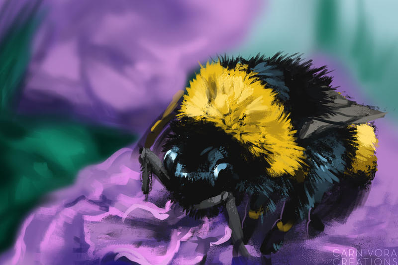 Bee friend by Chickenbusiness