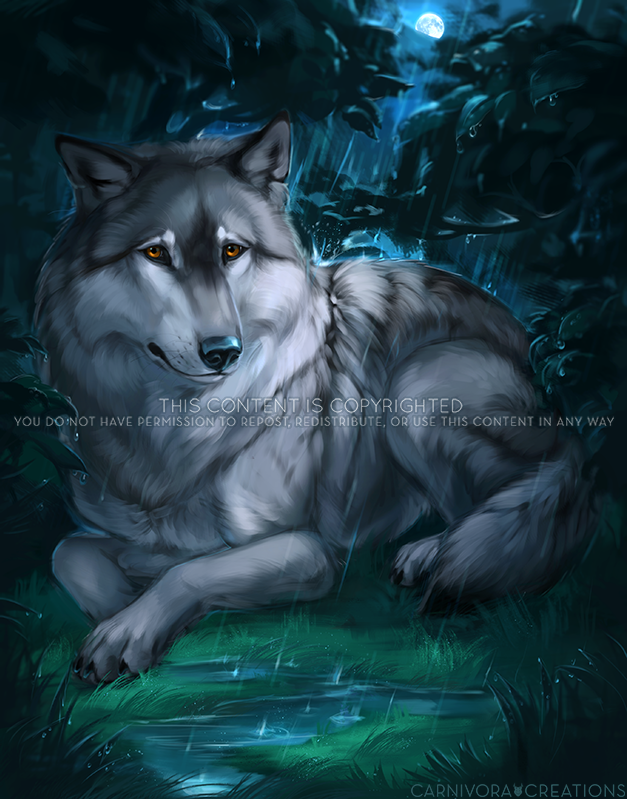 The Lone Wolf by Chickenbusiness