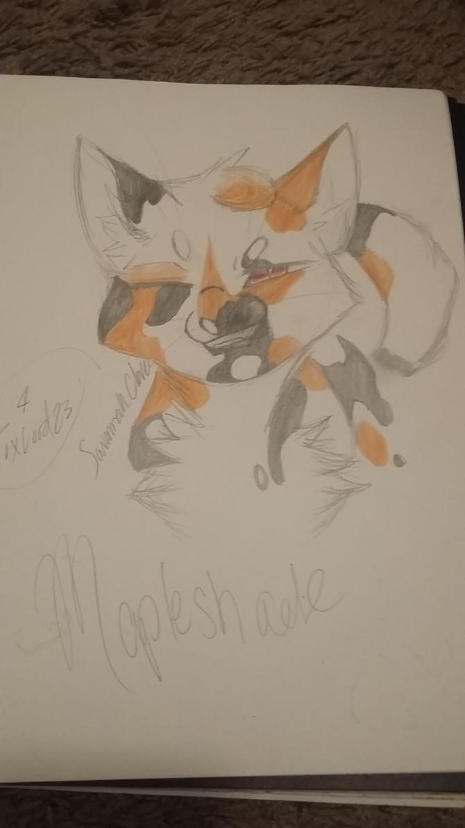 Mapleshade- Request from FoxyLord23 by SavannahClover