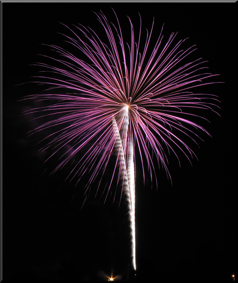 Fireworks Png 24 Transparency Canfield firework in pink by