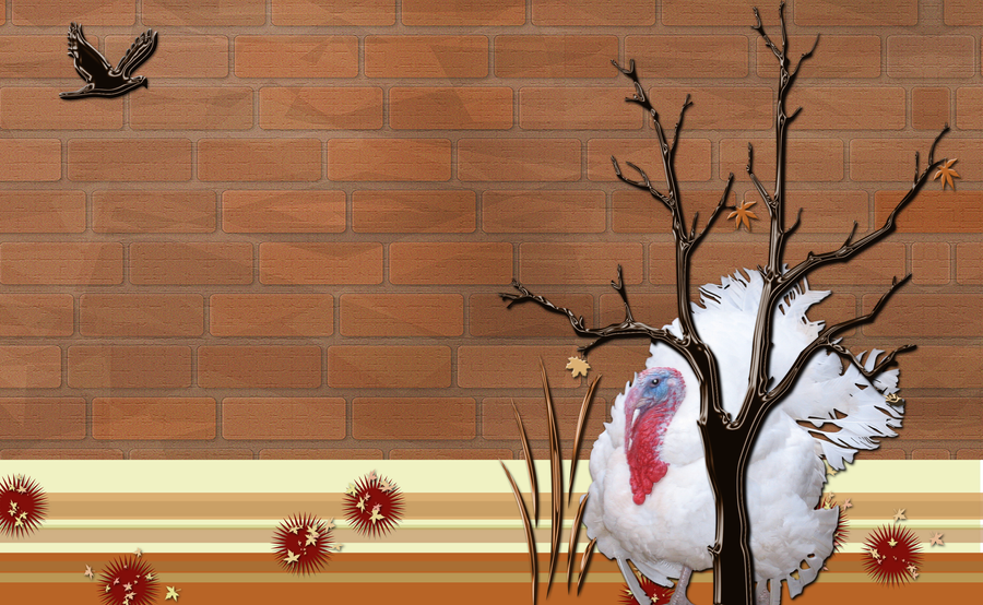 Autumn Turkey Hiding WP by WDWParksGal