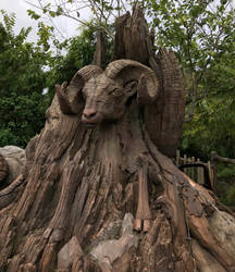 A Ram Wooden Carving IMG 5065