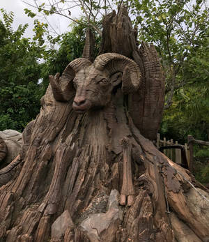 A Ram Wooden Carving IMG 5065 by WDWParksGal