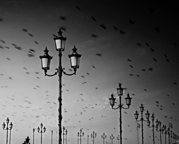 go back by Melidesidero