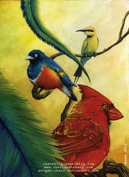 Oiseaux exotiques by Morgan-chane