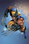 Wolverine: Joe and Tim