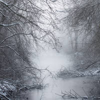 Misty Pond by vamosver