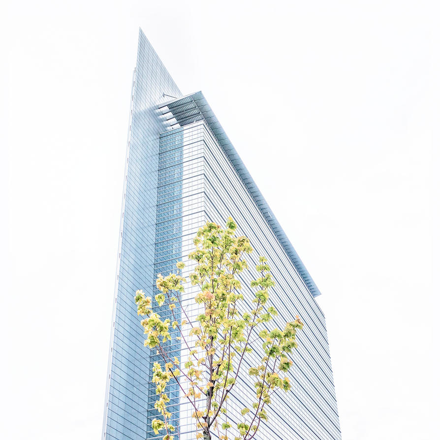 Frankfurt Springtime by vamosver