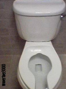 Flushing by wooertoer3000