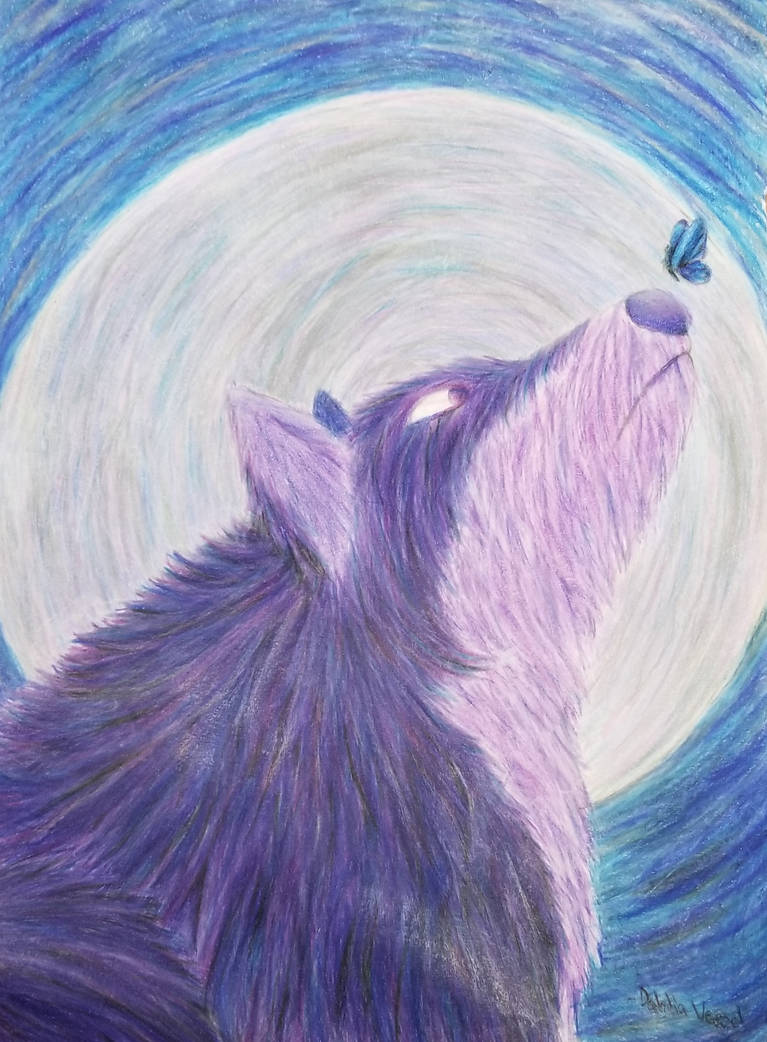 mysterious wolf drawing