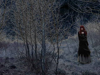 At Night in the Dead Lands by Runewitch