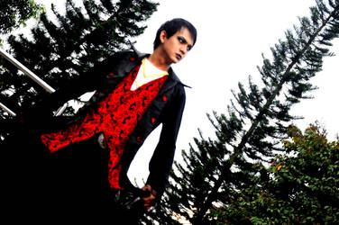 Here comes the Dracula by matzenmatzen