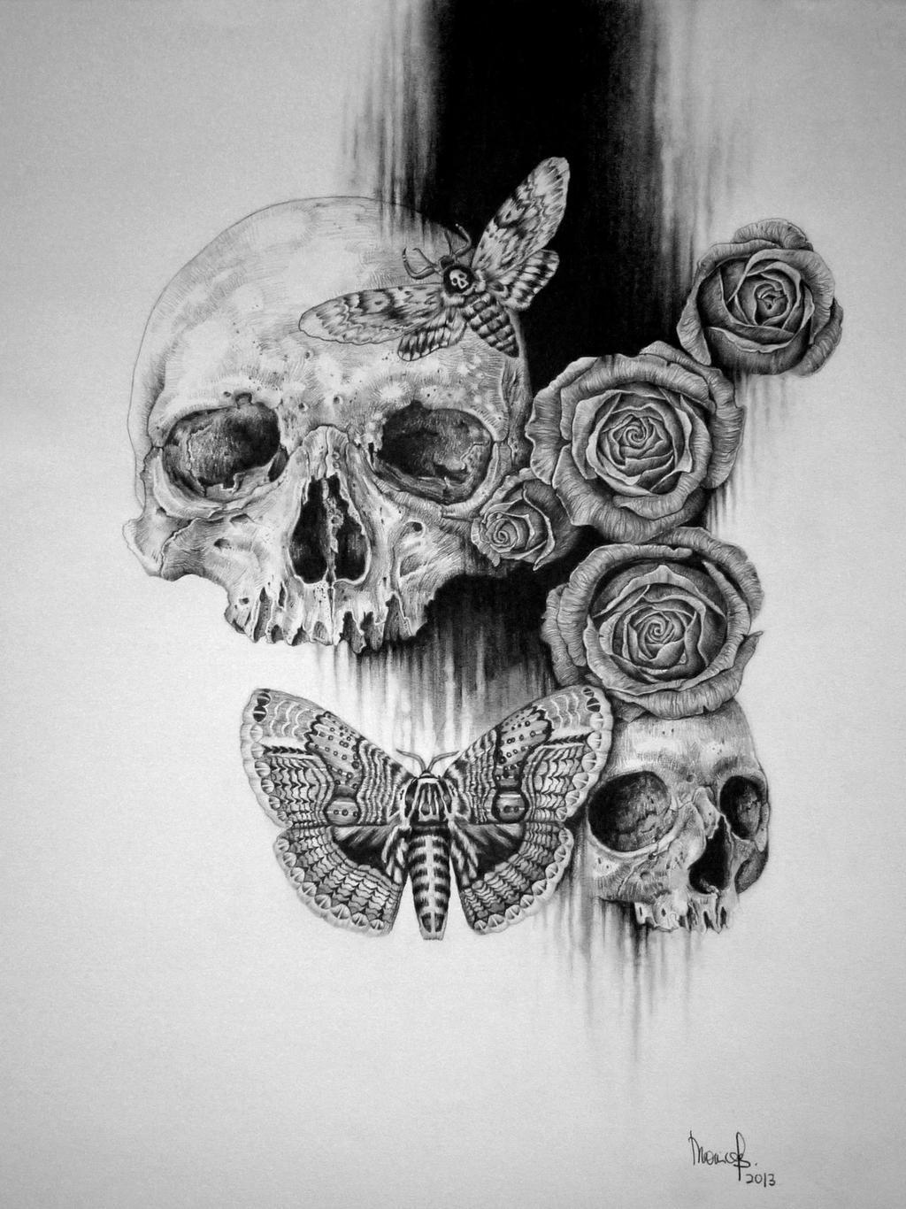 Skull and Roses by zephyrxavier on DeviantArt