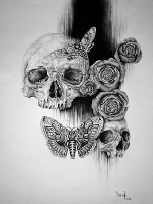 Skull and Roses by zephyrxavier