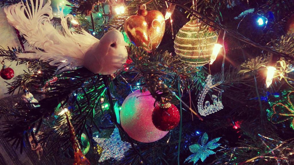 Merry Christmas by Katarynaa