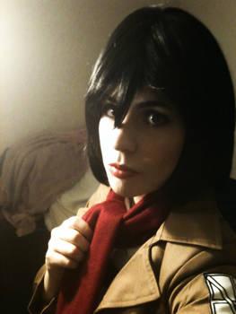 Mikasa Teaser