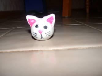 The original Awkward Kitten by nishad
