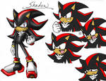 New Shadow Concept
