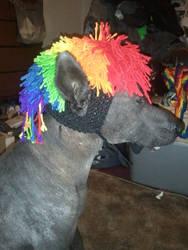 Rainbow Mohawk Dog Hat