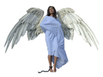 Chained Angel stock