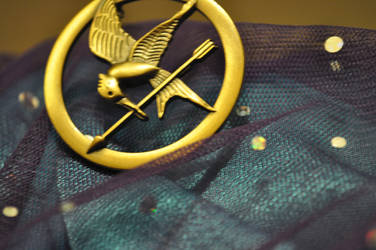 Hunger Game's Mockingjay by 1000maddy