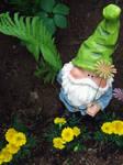 Hidden Gnome by blueXgiraffe